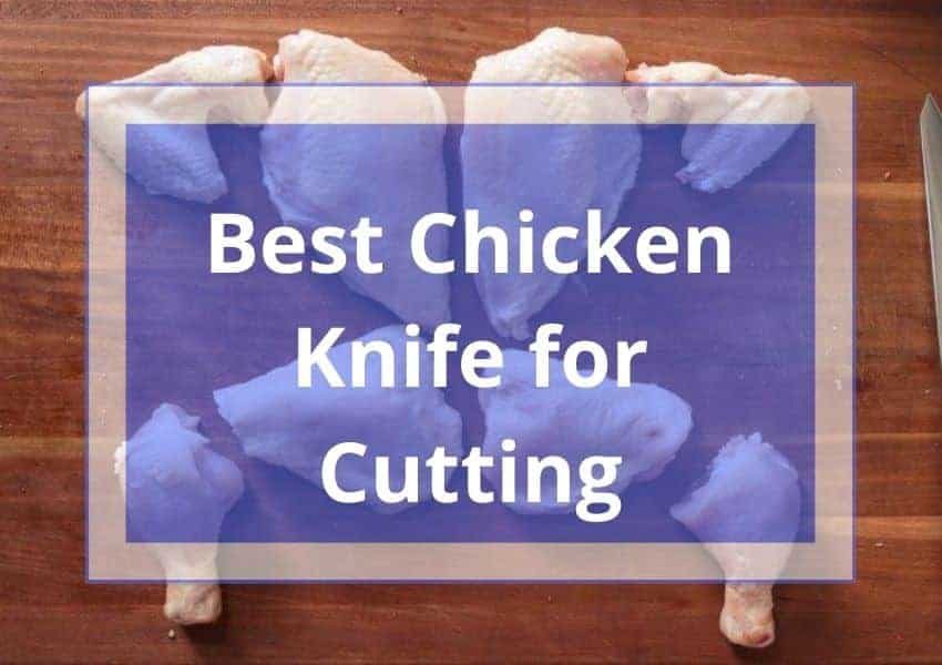 Best Chicken Knife for Cutting