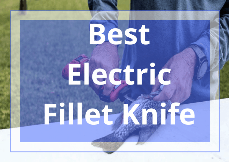 10 Best Electric Fillet Knife in 2021 Review