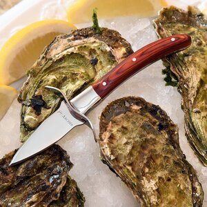 Oyster Knife by Archer Premium Oyster Shucking Knife