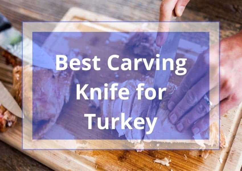 best carving knife for turkey