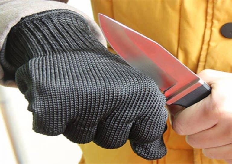 10 Best Cut Resistant Gloves For Kitchen 2021
