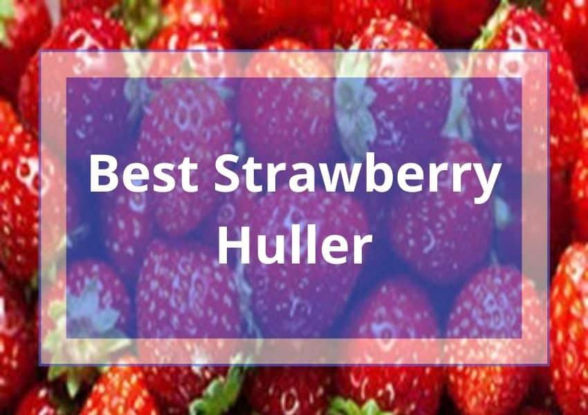 Best Strawberry Huller