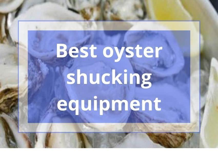 Best oyster shucking equipment