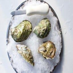 How do the Wellfleet puffer oyster taste like?