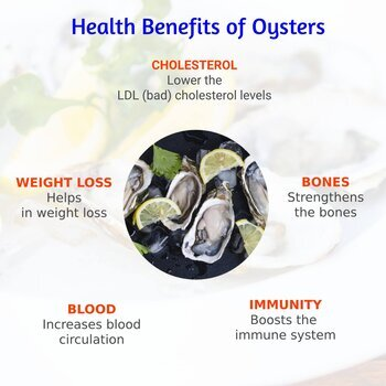What are the health benefits of oysters