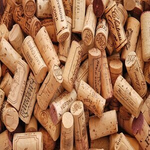 Cork for maintaining the blade of a paring knife