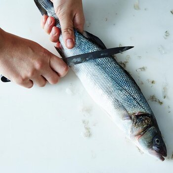 How to scale fish