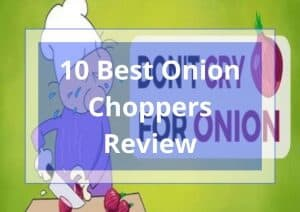 10 Best Onion Choppers Review