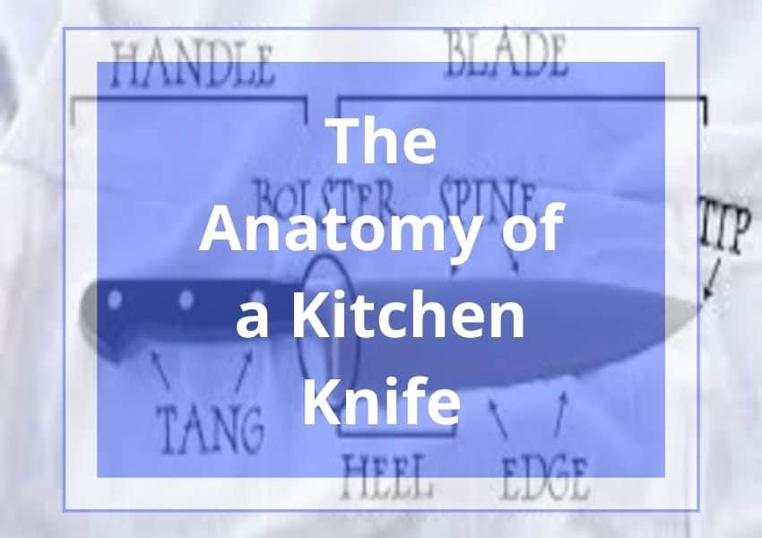 The anatomy of a kitchen knife